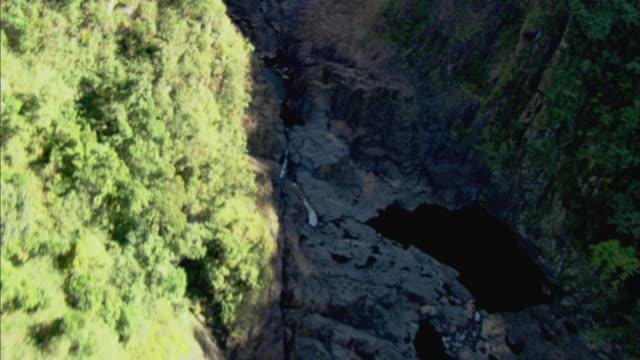 ms zi aerial daintree rainforest and waterfalls, cairns, queensland, australia - ingrandimento video stock e b–roll