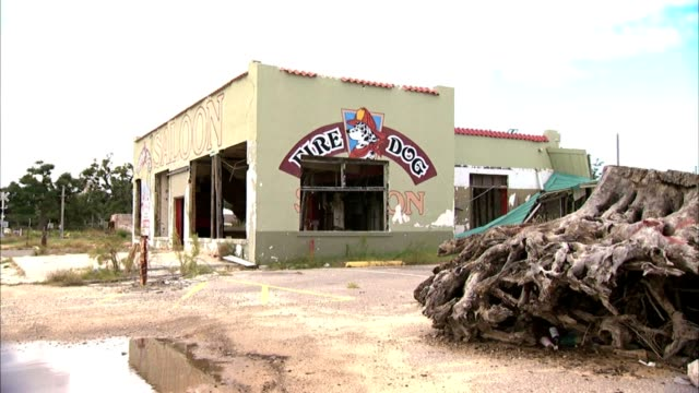 cu dalmatian dog logo on wall of fire house saloon zo ws fire dog saloon commercial gulf coast building w/ no windows doors huge uprooted tree root... - dalmatian dog stock videos and b-roll footage