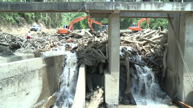 Dam blocked by logs after major landslides