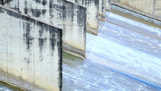 hd: dam dammluckorna - damm stillastående vatten bildbanksvideor och videomaterial från bakom kulisserna