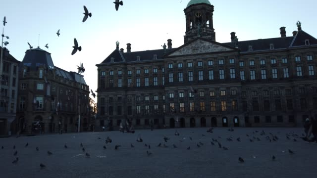 dam square in amsterdam with few people - news event stock videos & royalty-free footage