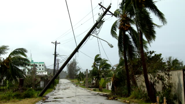 damage to power lines and utility poles on the island of rota after typhoon dolphin made landfall on 15th may 2015 - グアム点の映像素材/bロール