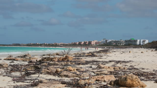 damaged beach in cayo coco, cuba after hurricane - caribbean sea stock videos & royalty-free footage