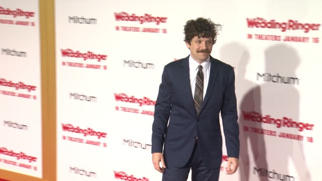 "dan gill at ""the wedding ringer"" los angeles premiere at tcl chinese theatre on january 06, 2015 in hollywood, california. - gill stock videos & royalty-free footage"