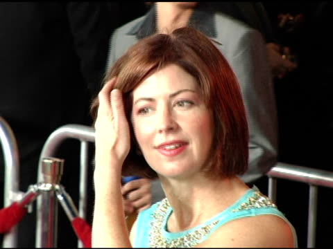 Dana Delany at the Opening Night of 'The Ten Commandments' at the Kodak Theatre in Hollywood California on September 27 2004