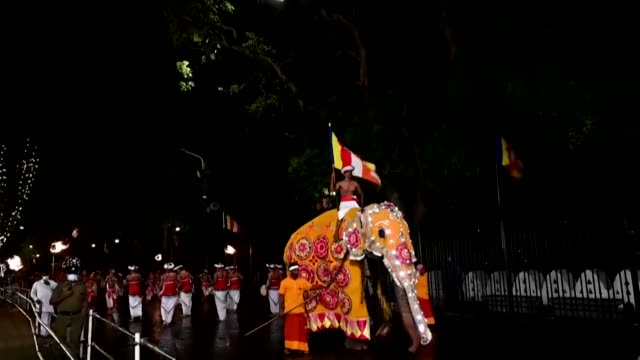 dancers fire twirlers musicians and elephants adorned in glittering costumes are part of sri lanka's esala perahera festival - intricacy stock videos & royalty-free footage