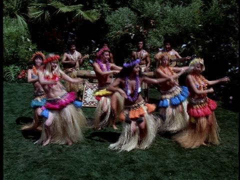 vídeos de stock, filmes e b-roll de dancers perform a hula to live music. - cultura do havaí