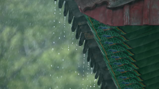 'dancheong' of songgwangsa temple in rain / suncheon-si, jeollanam-do, south korea - moulding trim stock videos & royalty-free footage