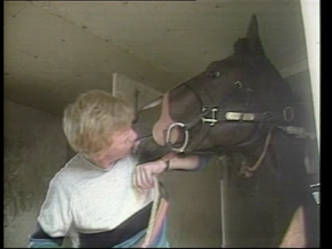 Dancing Brave prepares for last race USA California EXT Egypt airline plane arrival Dancing Brave off plane Groom kissing horse Santa Anita Park...