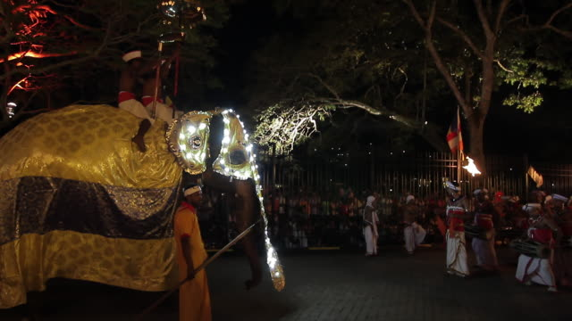 ms dancing elephant in buddhist procession 'esala perahera' (festival of tooth) audio / kandy, central province, sri lanka - sri lankan culture stock videos and b-roll footage