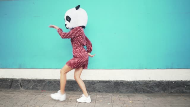 dancing panda - tipo di danza video stock e b–roll