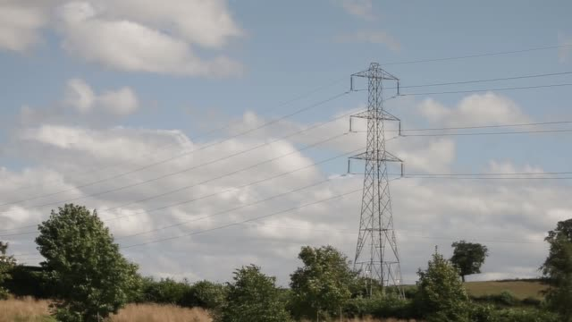 vidéos et rushes de a danger sign sits on a telegraph pole in uk on friday aug 16 various shots electricity pylon and power transmission lines on a sunny day with blue... - processus biologique