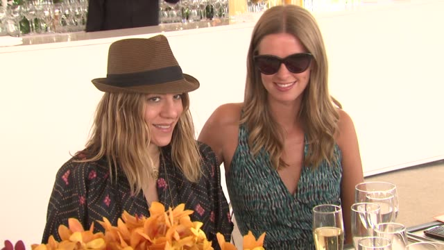 dani stahl and nikki hilton at the the fourth annual veuve clicquot polo classic at new york ny - stahl stock videos & royalty-free footage