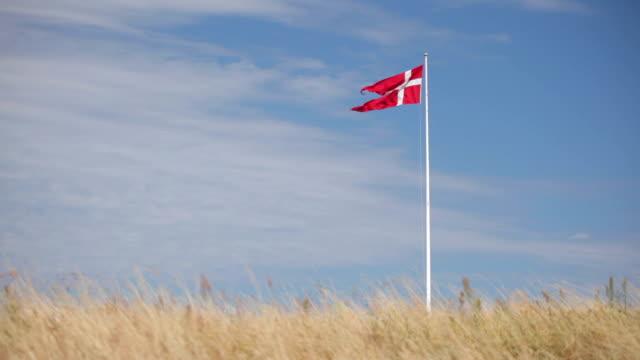 vídeos y material grabado en eventos de stock de danish flag on the dunes - danish flag