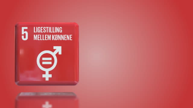 danish number 5 gender equality 3d box sustainability goals 2030 with copy space - gender equality stock videos & royalty-free footage