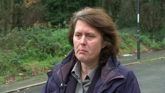 Appeal for information on second killer known as 'Ghost' ENGLAND EXT Det Insp Jo Sidaway interview SOT