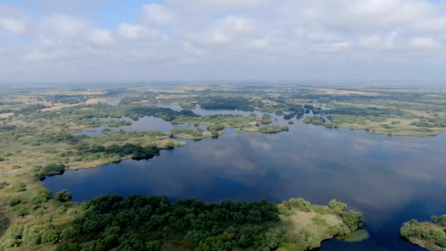 danube delta in mid spring with clouds / aerial drone view - river danube video stock e b–roll
