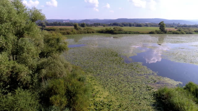 Danube Flood Plain in Bavaria