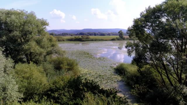 danube flood plain in bavaria - backwater stock videos & royalty-free footage