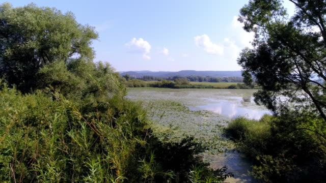 danube flood plain in bavaria - river danube stock videos & royalty-free footage