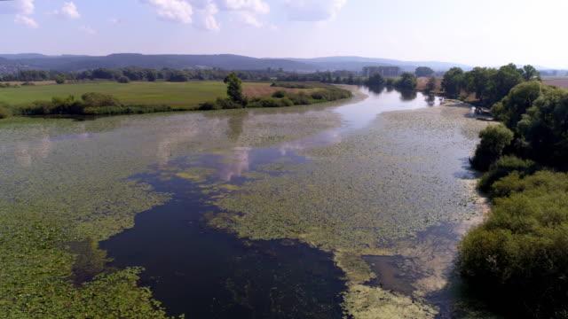 donau-hochwasserebene in bayern - sumpf stock-videos und b-roll-filmmaterial