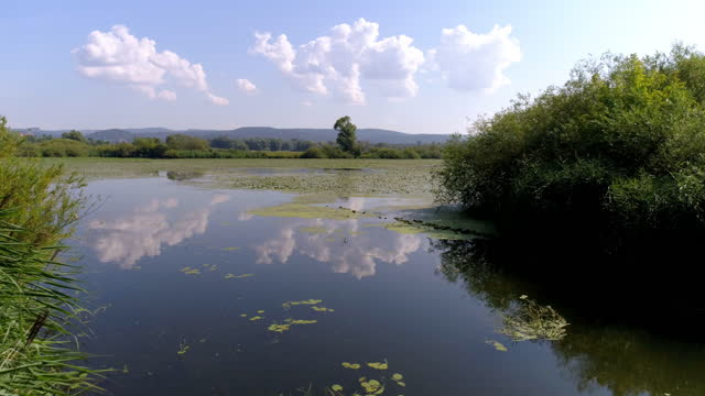 danube flood plain in bavaria - riverbank stock videos & royalty-free footage