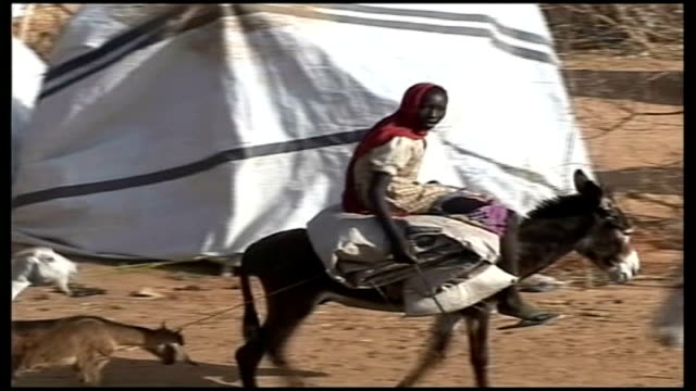 ongoing conflict two hundred thousand people have been killed tx sudan darfur ext young girl rides along on donkey thru refugee village - esel stock-videos und b-roll-filmmaterial