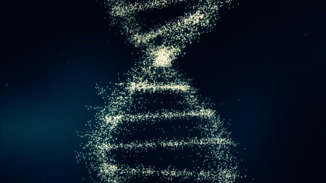 dark blue dna - chromosome stock videos and b-roll footage