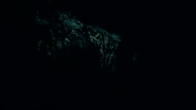 dark cave - cave stock videos & royalty-free footage