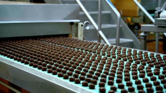 Dark chocolates moving on a green conveyor belt in a chocolate factory