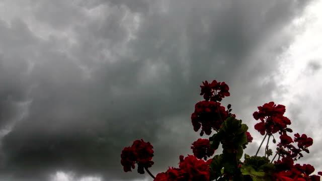 dark clouds - death stock videos & royalty-free footage