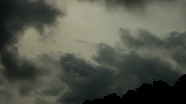 dark dramatic sky above forest - overcast stock videos & royalty-free footage