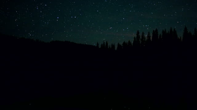 dark forest silhouette over lake anthony lake in the wallowa-whitman national forest at night stars - 国有林点の映像素材/bロール