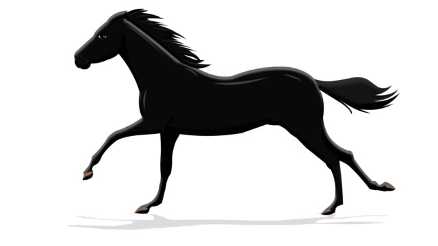 dark horse running - horse stock videos & royalty-free footage