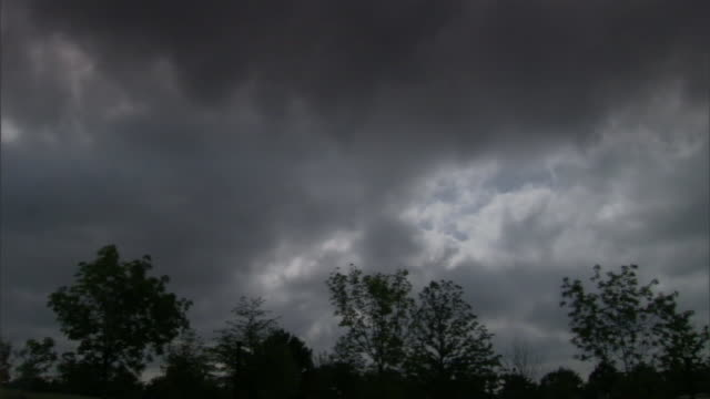 dark, ominous clouds drift through the sky as tree branches sway in the wind. - branch stock videos & royalty-free footage