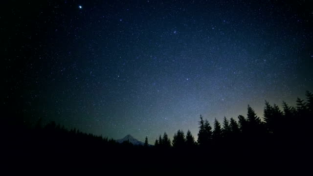dark silhouette of fir and pine tree forest against starry night sky and snowy mountain mt. hood - mt hood stock videos & royalty-free footage
