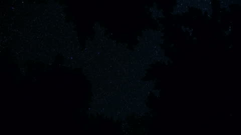 dark silhouette of fir and pine tree forest against starry night sky motion spin - oregon us state stock videos & royalty-free footage