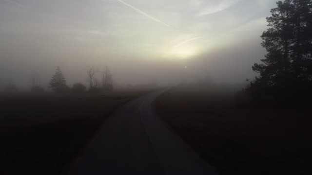 dark spooky dawn in foggy rural scene with country road - country road stock videos & royalty-free footage