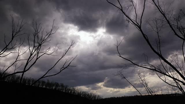 vídeos y material grabado en eventos de stock de dark storm clouds, forest fire damaged trees, climate change - imagen virada