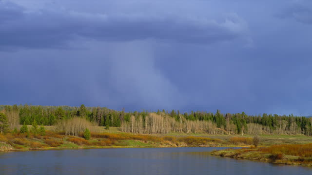wide shot dark storm clouds over trees and snake river at oxbow bend, grand teton national park, wyoming - スネーク川点の映像素材/bロール