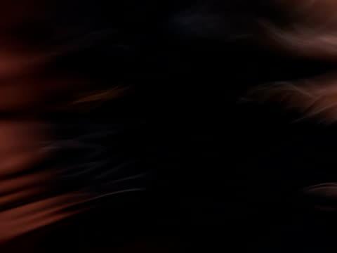 dark wavelets - 茶色背景点の映像素材/bロール