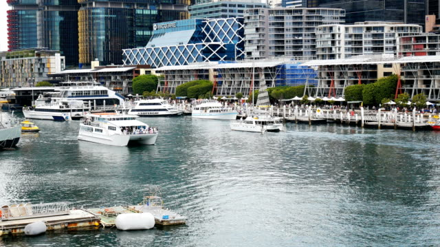 darling harbour in sydney - water taxi stock videos & royalty-free footage
