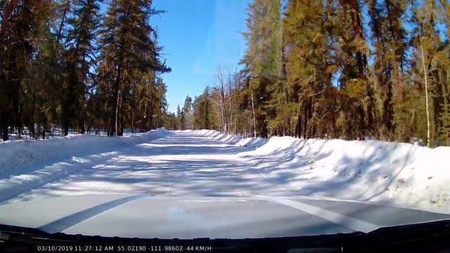 vídeos y material grabado en eventos de stock de dashcam footage of snow covered forestry roads in late winter - vehículo de todo terreno