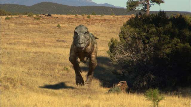 a daspletosaurus hunts down two grazing maiasauruses, then attacks one. - extinct stock videos & royalty-free footage