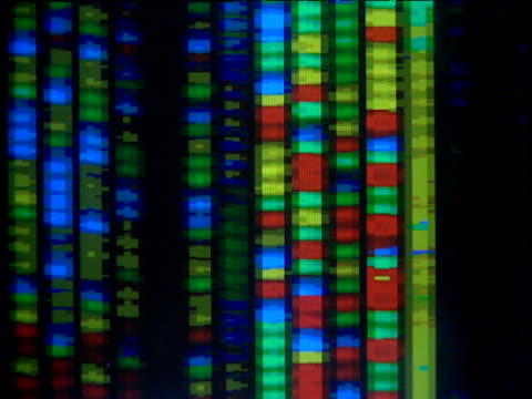 dna data scrolls down computer screen - genetic research stock videos & royalty-free footage