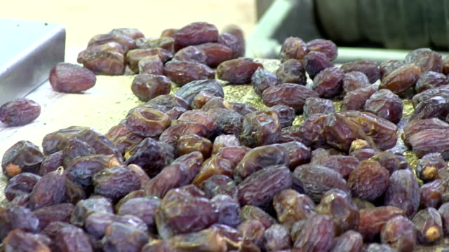 Dates production, selection of the dates for packaging, Jerico, Palestine