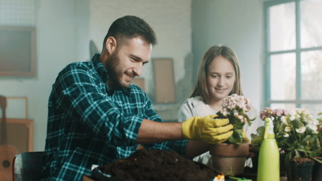 a daughter helping her father planting flowers - giardinaggio video stock e b–roll