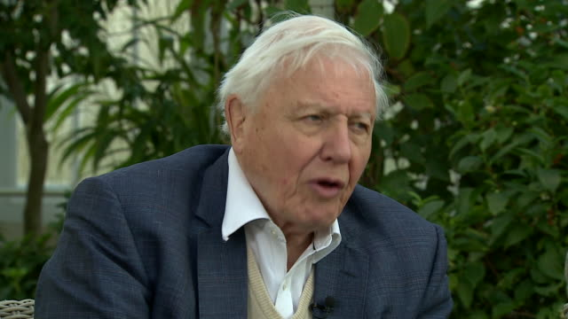 "david attenborough saying he believes people are ""waking up"" to the threat of climate change ""and we are changing our habits"" - climate change stock videos & royalty-free footage"