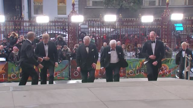 vídeos de stock, filmes e b-roll de david attenborough walks up steps of natural history museum with princes charles, william and harry for world premiere of netflix series our planet - estreia