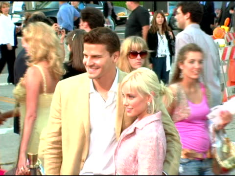David Boreanaz and Jamie Bergman at the 'Mr and Mrs Smith' World Premiere at the Mann Village Theatre in Westwood California on June 7 2005